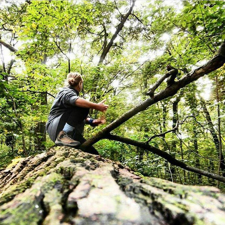 treeclimbing berlin treptow hitchhiking