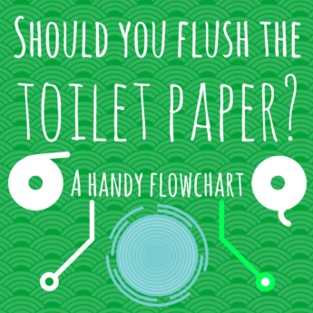 should you flush the toilet paper flowchart infographic world map