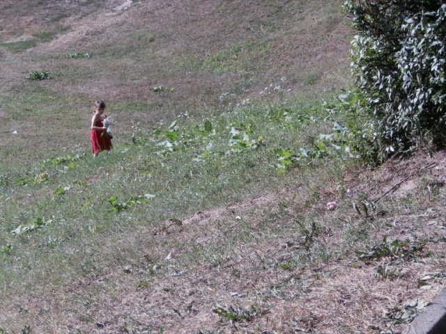 Babyn Yar ravine 2013 picnic site