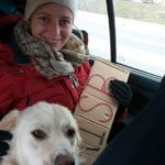 Hitch Sibiu to Timișoara Romania with a dog