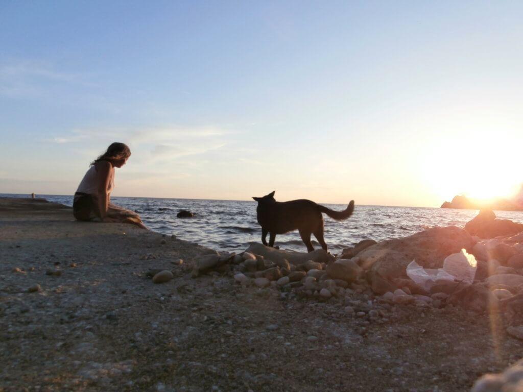 Kruče Montenegro beach sunset dog hitchhiking sea adriatic mediterranean balkan