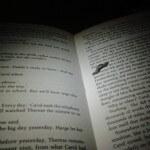 literal book worm montenegro crna gora carol book lesbian robichek