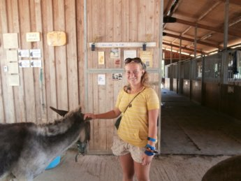 Corfu Donkey Rescue Greece 5