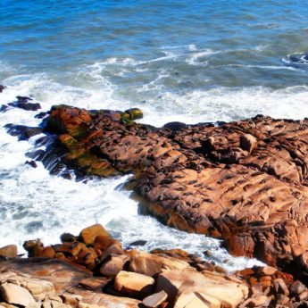 cabo polonio uruguay seals sea lions lobo rocks beach