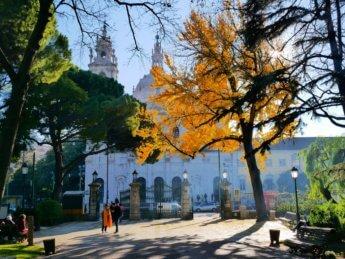 Jardim da Estrela Basilica