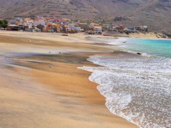 birdwatching bird sea atlantic ocean worm beach food São Pedro praia Cabo Verde Mindelo São Vicente