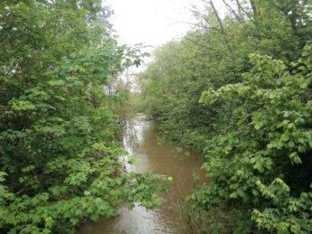 Stehbach side river donau danube rottenacker dam