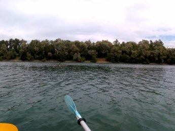 Linz to Au an der Donau 14