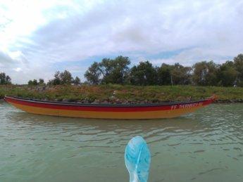 26 Au an der Donau to Grein 10