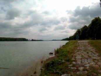 26 Au an der Donau to Grein 13