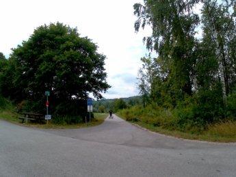 26 Au an der Donau to Grein 15