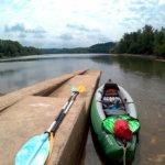 26 Au an der Donau to Grein 17
