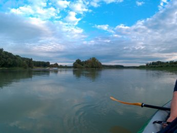 Day 37 - danube floodplains Gönyű kayak canoe Danube 3