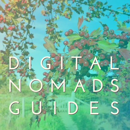 Books Digital Nomads Guides pic 1 fixed for real
