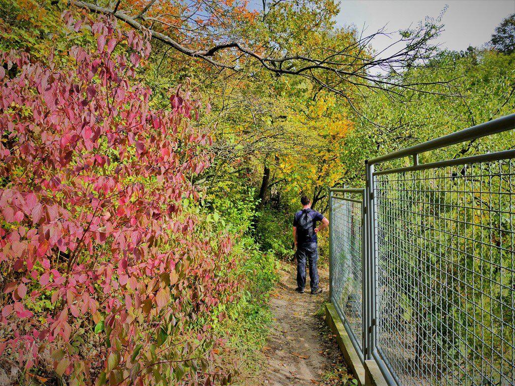 31 autumn hike bratislava slovakia