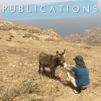 Publications donkey Brava Cabo Verde press