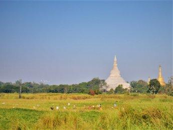 Myanmar train yangon mawlamyine 11