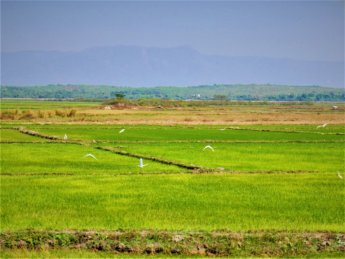 Myanmar train yangon mawlamyine 17