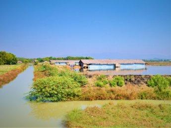 Myanmar train yangon mawlamyine 18