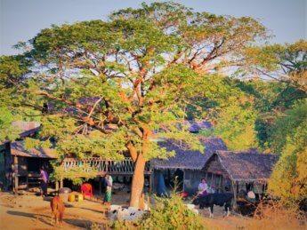 Myanmar train yangon mawlamyine 6