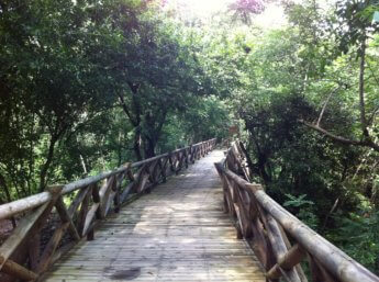 2 boardwalk trail the peak providencia old providence