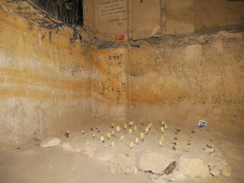Maastricht summer casemates cave tour 1
