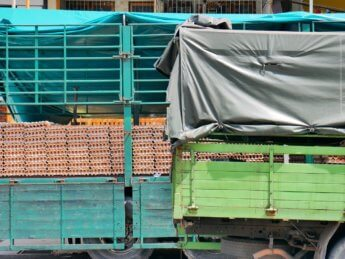 25 may egg truck 1