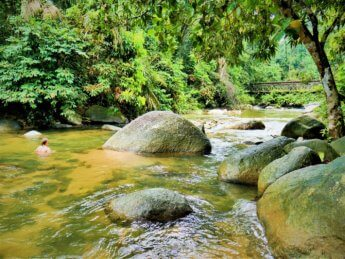 10 Burmese Pool Taiping