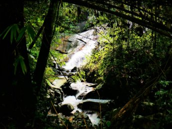 4 bukit larut foothills waterfall