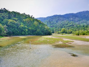 Penang national park meromictic lake turtle beach pantai keracut 16