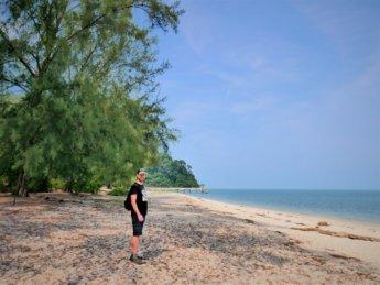 Penang national park meromictic lake turtle beach pantai keracut 19