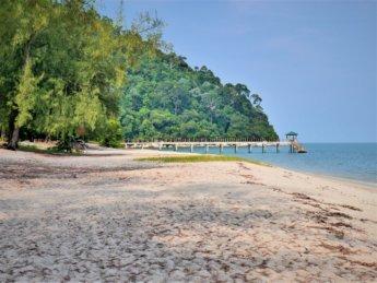 Penang national park meromictic lake turtle beach pantai keracut 20