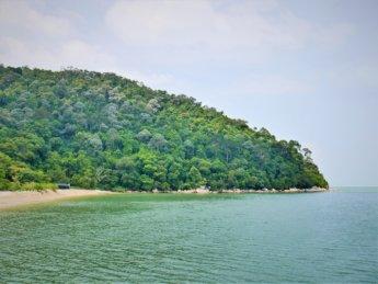 Penang national park meromictic lake turtle beach pantai keracut 22