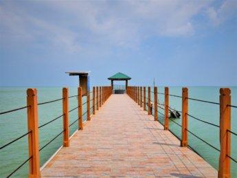 Penang national park meromictic lake turtle beach pantai keracut 24