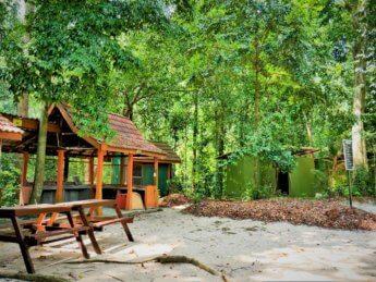Penang national park meromictic lake turtle beach pantai keracut 26