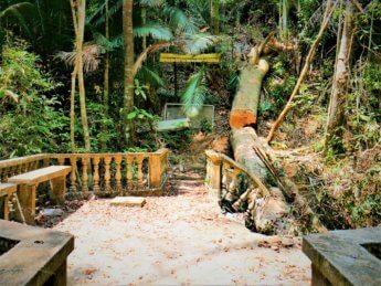 Penang national park meromictic lake turtle beach pantai keracut 32