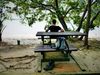 Penang national park meromictic lake turtle beach pantai keracut 40