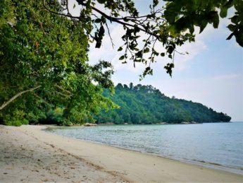 Penang national park meromictic lake turtle beach pantai keracut 41