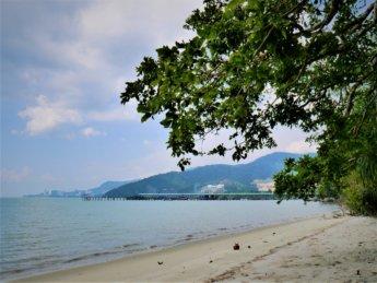 Penang national park meromictic lake turtle beach pantai keracut 42
