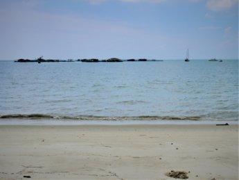 Penang national park meromictic lake turtle beach pantai keracut 43