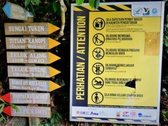 Penang national park meromictic lake turtle beach pantai keracut 6