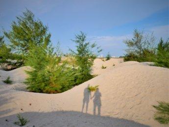 Melaka desert malacca sand dunes klebang 7