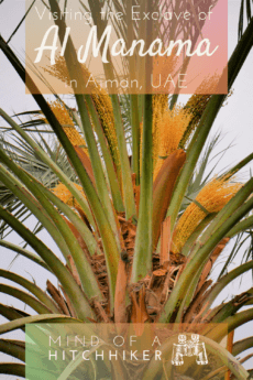1 Al Manama, Ajman — Visiting the Inland Exclave + Al Dhaid as a Day Trip from Sharjah