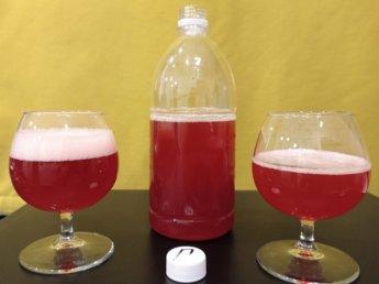 pomegranate craft beer in uzbekistan live beer tashkent